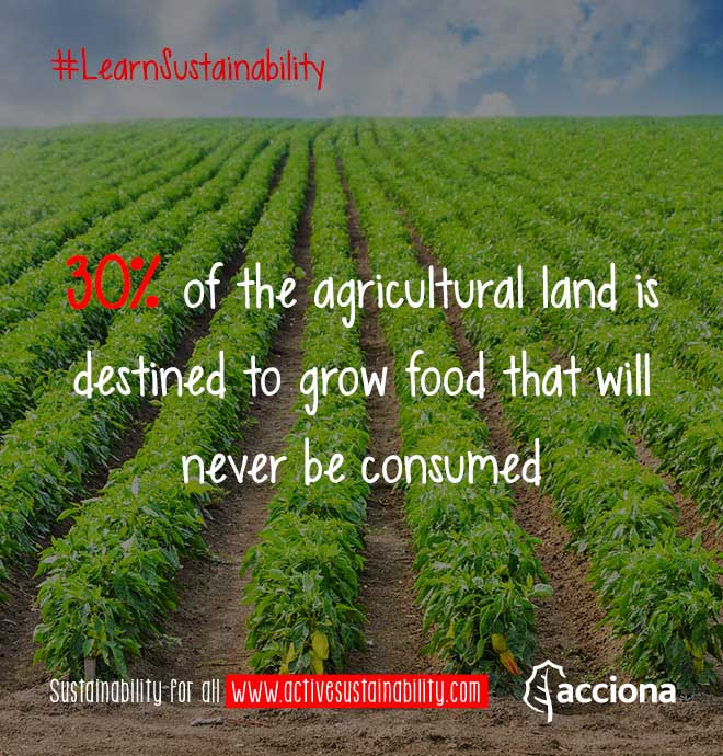 #LearnSustainability: Wasted agricultural land