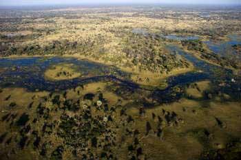 Delta del río Okavango en Botswana (África)