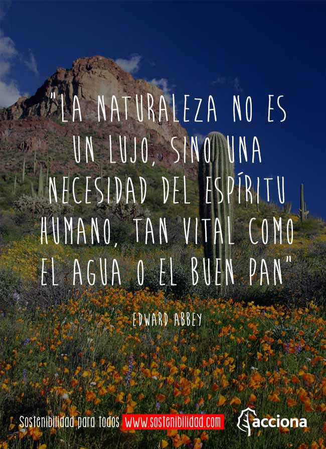 Edward Abbey Y La Naturaleza