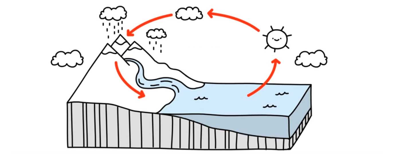 <p>How the water cycle works?</p> <p> </p>