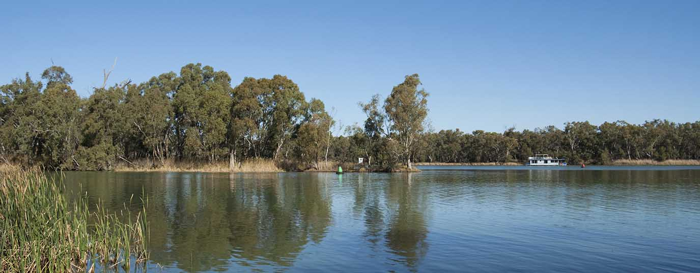 <p>Murray-Darling basin wetlands</p>