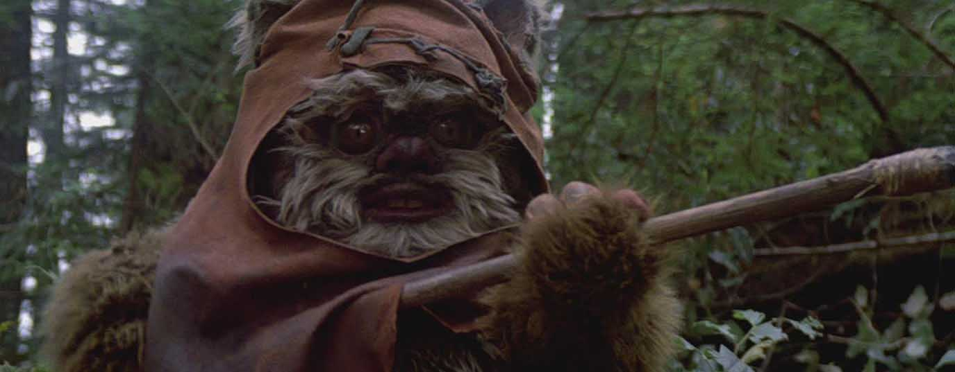 <p>Ewoks - The sustainable will inherit the Earth</p>