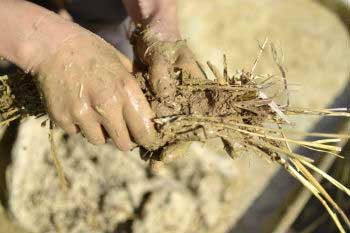 Las fibras vegetales mezcladas con cemento actúan como aislante