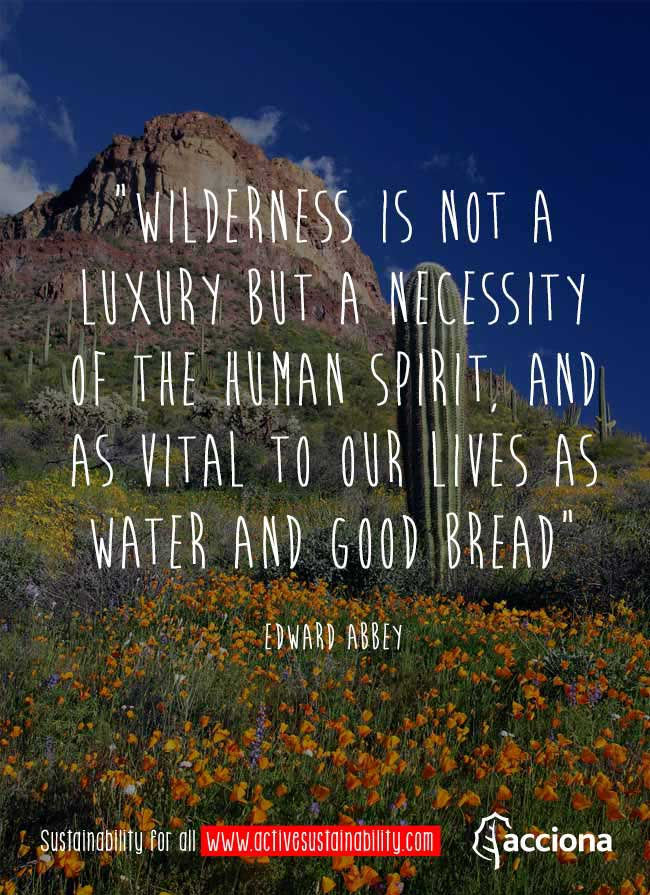 Edward Abbey and nature