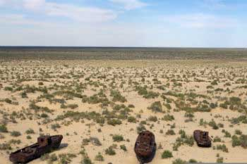 The Aral Sea become dried out because of the cotton production