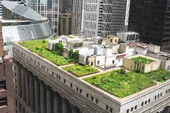 Green roofs at cities