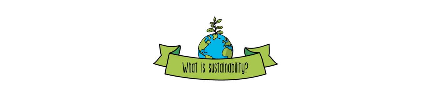 what is sustainability sustainability for all