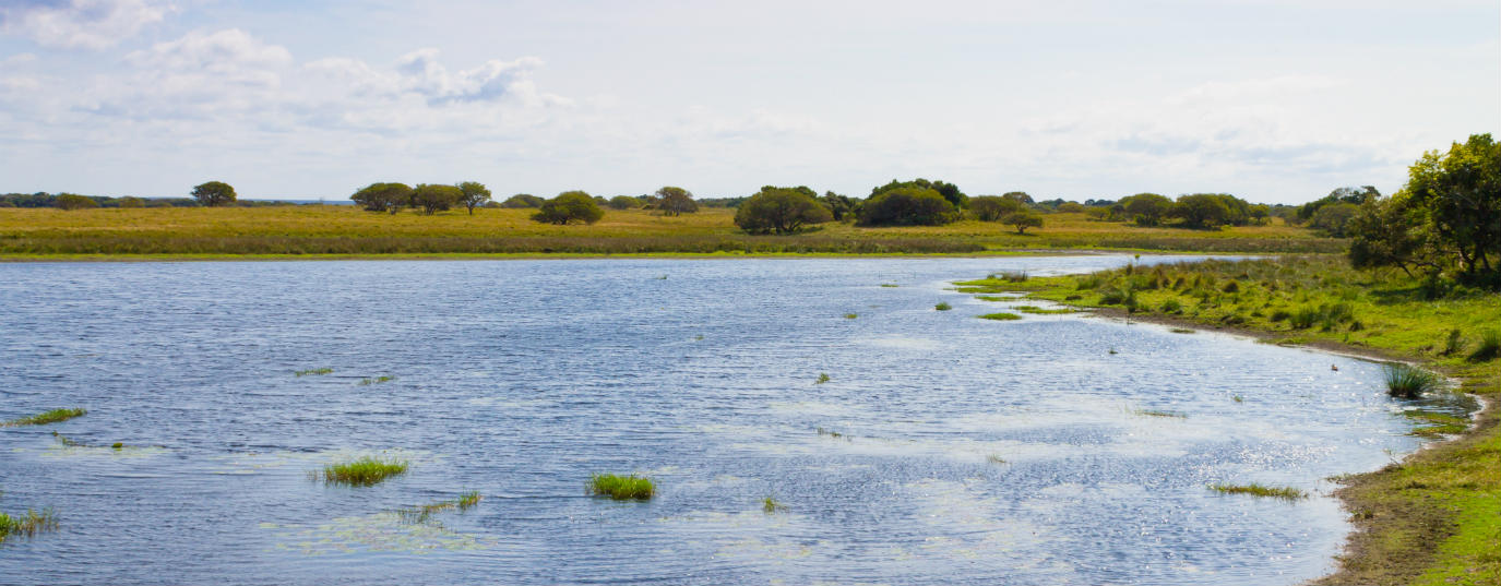<p>iSimangaliso Wetland Park (South Africa)</p>