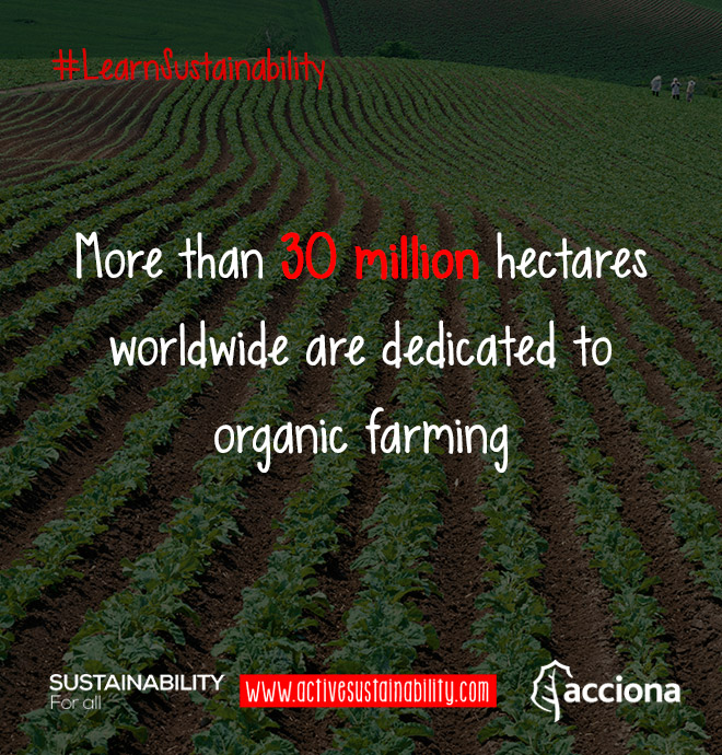 #LearnSustainability: Organic farming