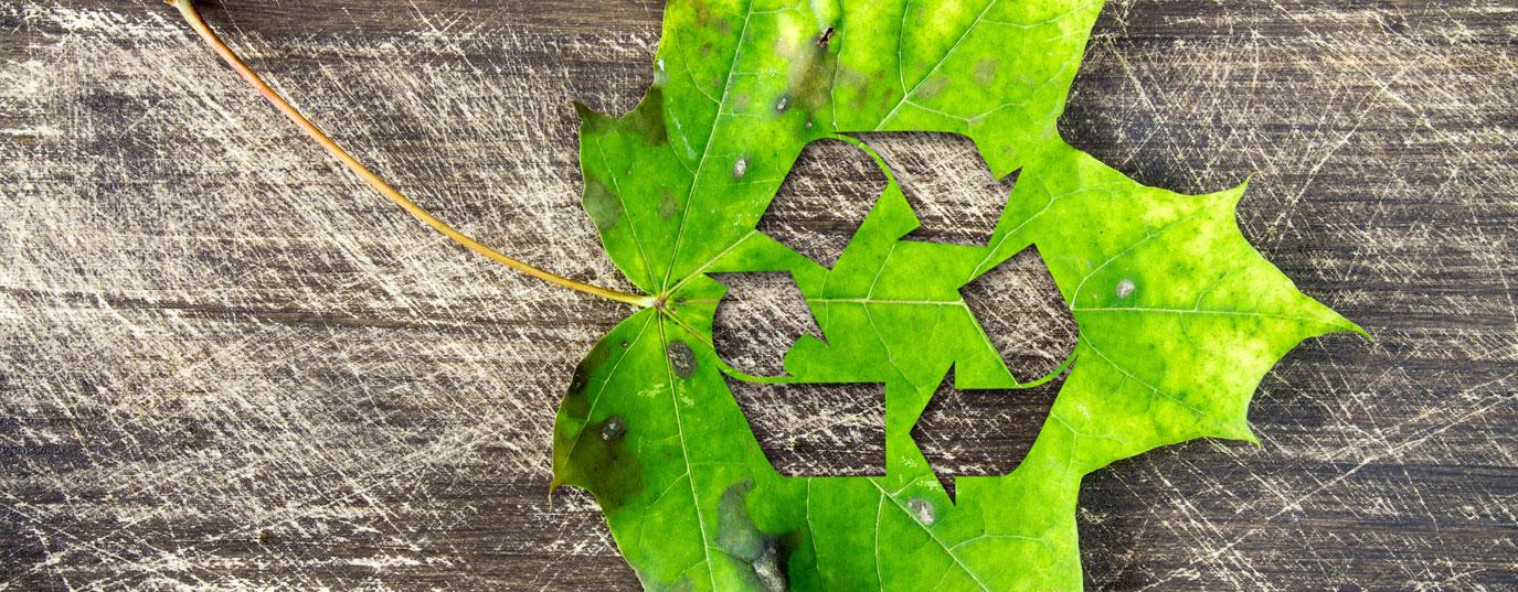 Imagen - ¿En qué consiste la economía circular?