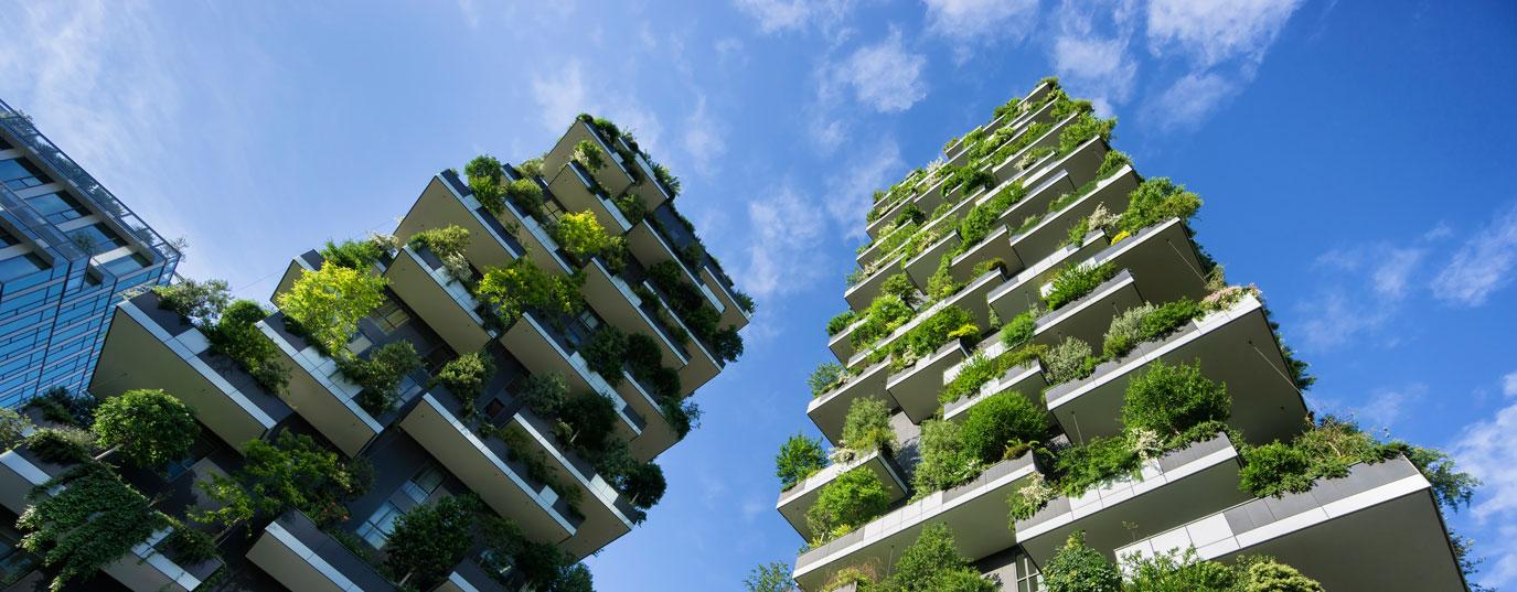 Arquitectura bioclim tica casas que ahorran Arquitectura de desarrollo