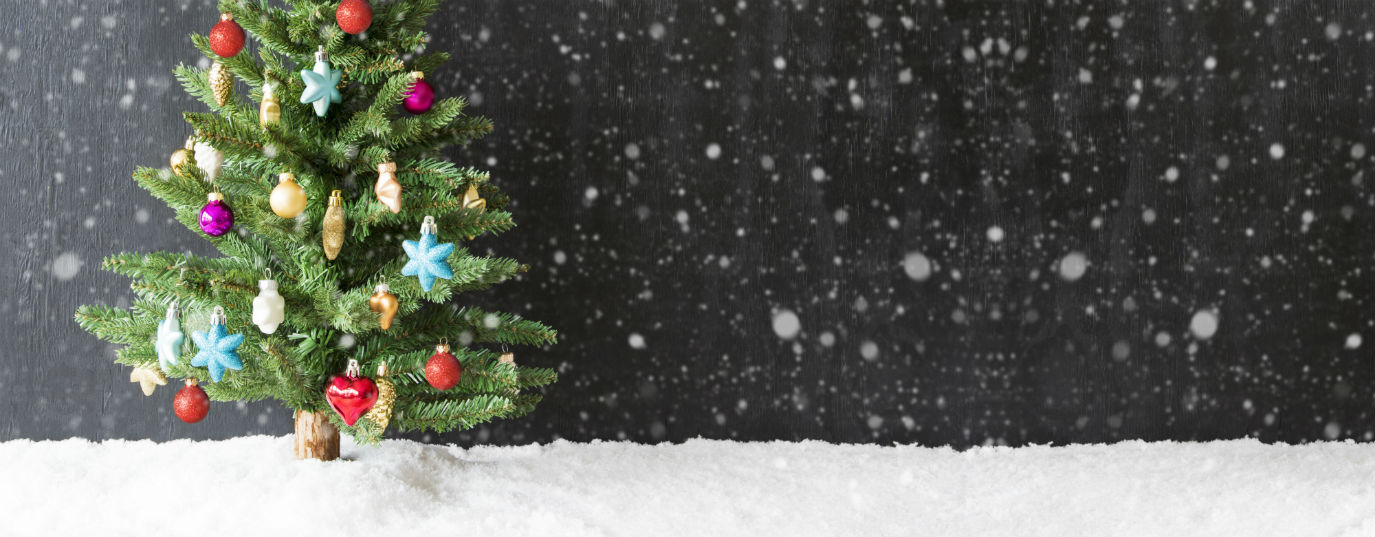 Huella De Carbono Mejor Arbol De Navidad Natural O De Plastico