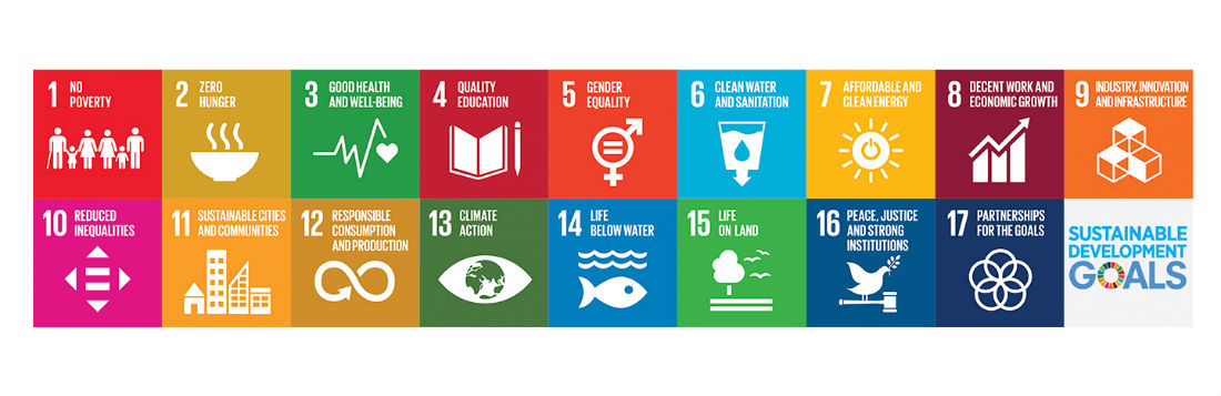 SDG Sustainable Development Goals